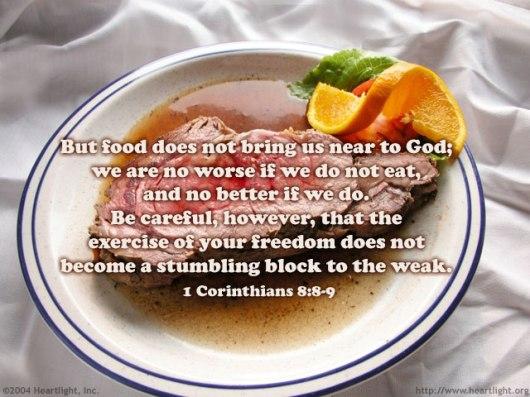 1 Corinthians 8 8-9