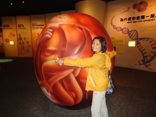 With model of human embryo