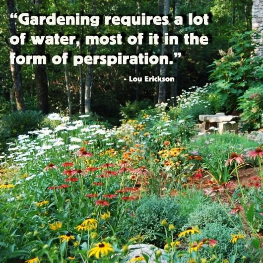gardening 12