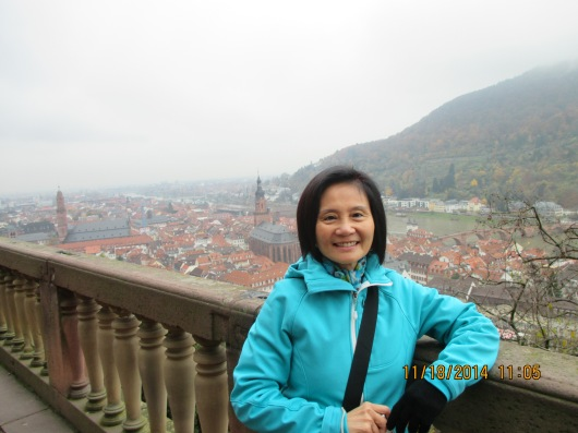 Panoramic view of Heidelberg from the castle.