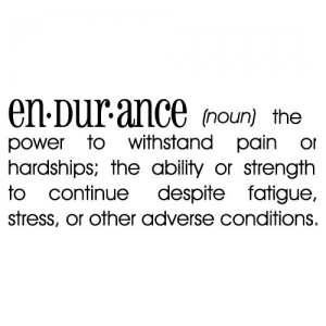 endurance 6