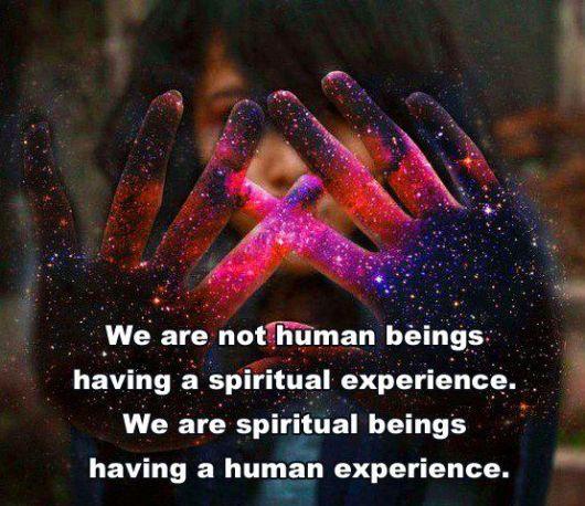 human beings 1