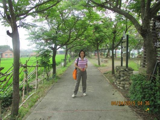 Sugar cane park